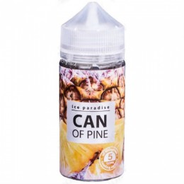 ICE PARADISE - CAN OF PIN  (100ml)