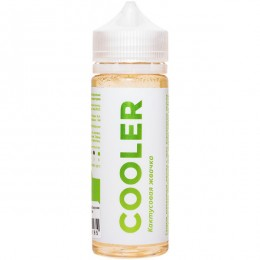 Cooler Кактусовая Жвачка 120ml